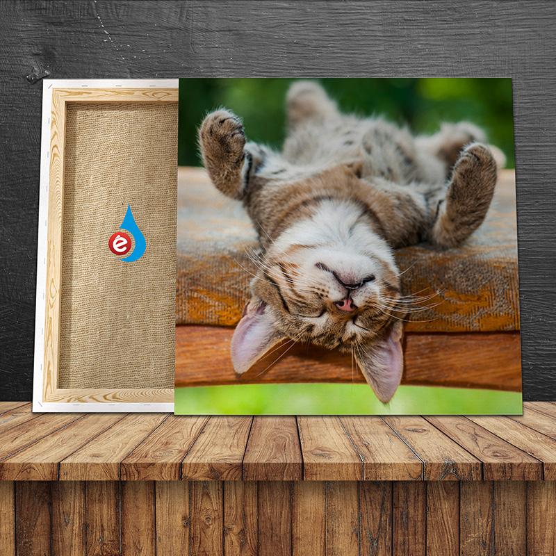 Lienzo impreso en bastidor de madera para decoración